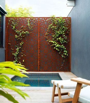 plunge pool with patterned screen
